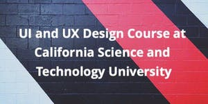 UI and UX Design Course Introductory Class