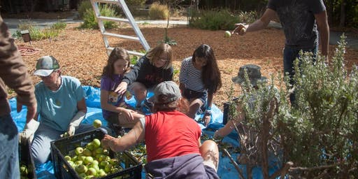 TriValley Community Harvest