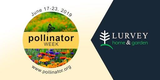 Celebrating National Pollinator Week!