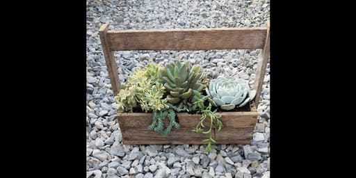 Sips & Succulents at Springfield Manor 6/23
