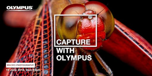 CAPTURE WITH OLYMPUS - MACRO PHOTOGRAPHY (KL)