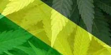 4th Jamaican Integrated Medical Cannabis Symposium.  JAMECANN 2019 tickets