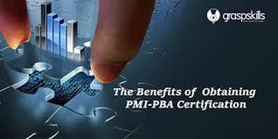 PMI Professional in Business Analysis in Jersey Ci