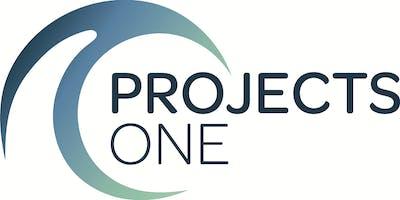 ProjectsOne relatiedag 2019