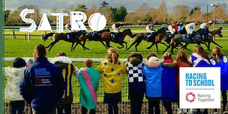 Numeracy Days - Lingfield Racecourse - 12th November 2019 tickets