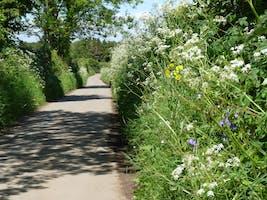 Roaming Warwickshire Walks: Yours To Explore