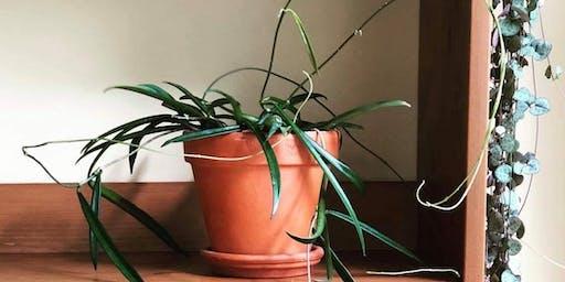 Plant Exchange with Botanica Philadelphia