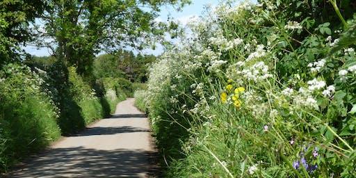 Dunsmore: Roaming Warwickshire Walks: Yours To Explore
