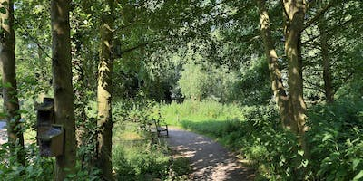 A walk to Willow Woods at RSPB Titchwell Marsh