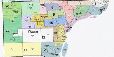 Wayne County Precinct Delegate Summit