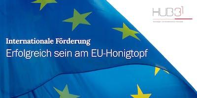 Internationale Förderung: Erfolgreich sein am EU-Honigtopf!