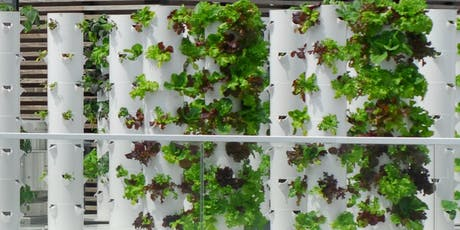 Sunset Happy Hour & Rooftop Farm Tour tickets