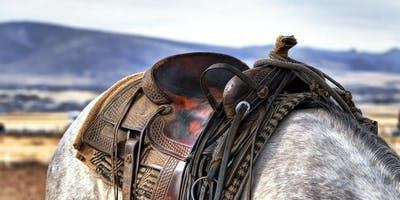 Saddle Up with Xero for the Calgary Stampede