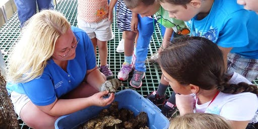 Open House at Chesapeake Biological Laboratory