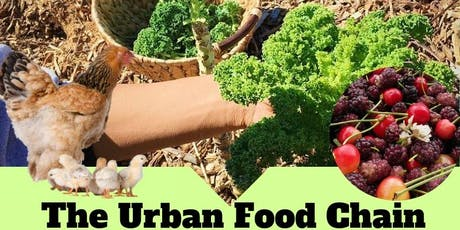 The Urban Food Chain tickets