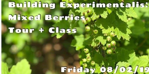 Building Experimentalis: Mixed Berries Tour & Class
