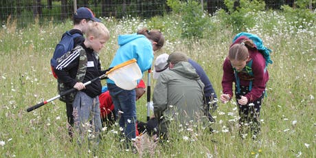 BioBlitz (Friday 5th July and Saturday 6th July) tickets