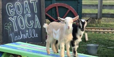 Goat Yoga Nashville- Jammin June