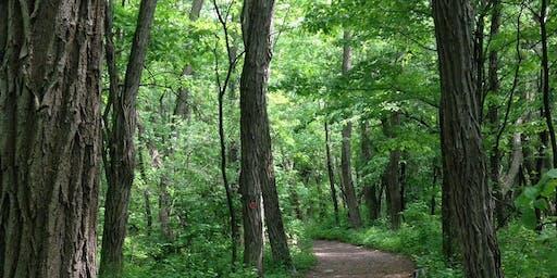 Medicinal Herb Walk at Tawasentha Park