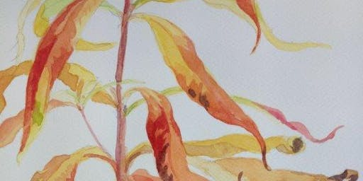 Watercolour workshop – Autumn colours