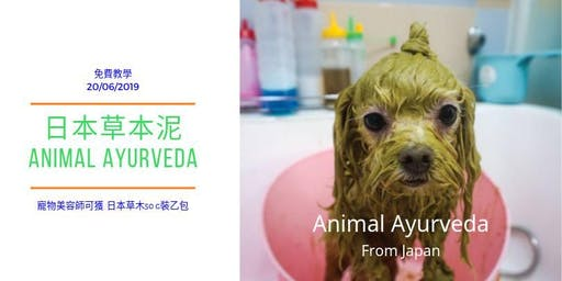 日本草本泥 Animal Ayurveda Spa  免費教學
