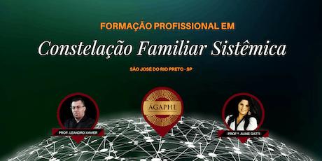 8ª Formação Profissional em Constelação Familiar Sistêmica - São José do Rio Preto/SP  ingressos