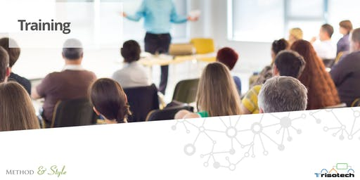 DMN Method and Style Basics Training