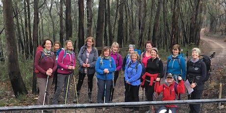 Weekend Walks for Women - Wine Shanty Trail and Long Ridge Lookout 22nd June tickets