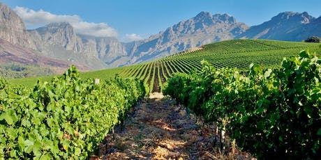 WineWise : Rethinking South Africa tickets