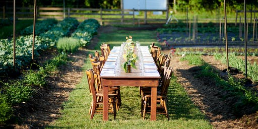 Dinner in the Field  -   Saturday, June 22nd from 6:30pm to 10:00pm
