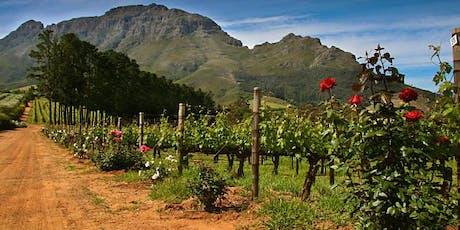 Fermentation Class:  South Africa tickets