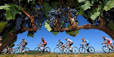 WineWise : Tour de France