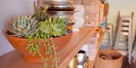 DIY Succulent Workshop- Cactus Collection tickets