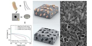 Bioinspired Materials Development for Next-Generation...