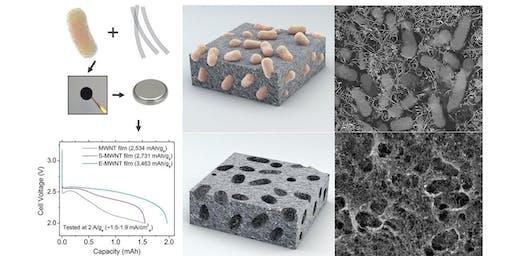 Bioinspired Materials Development for Next-Generation Batteries