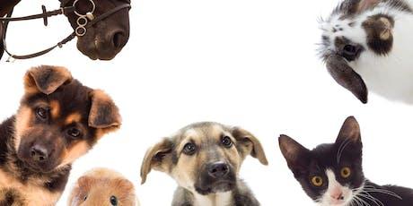 Thema avond Essentiële oliën voor hond, kat, paard tickets