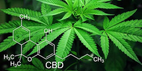 CBD 101: Navigating Hemp Plant Medicine tickets