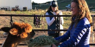 Ranch & Farm Tour at Cedar Ridge Ranch