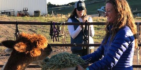 Ranch & Farm Tour at Cedar Ridge Ranch tickets
