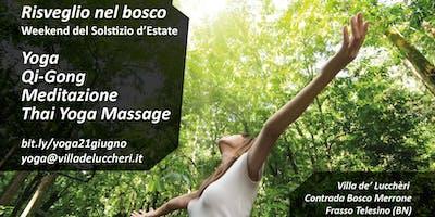 Risveglio nel bosco – Weekend di Yoga, Qi Gong, Meditazione, Thai Massage
