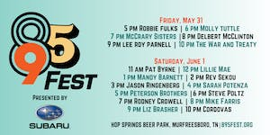 895 FEST: Single-Day Ticket for SATURDAY, June 1st
