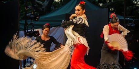 Flamenco y Sol tickets