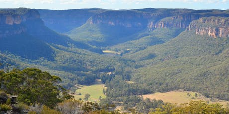 Full-day Oil Painting Class: Painting Blue Mountains in perspective tickets