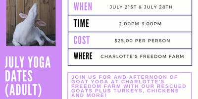 Goat Yoga at Charlotte's Freedom Farm