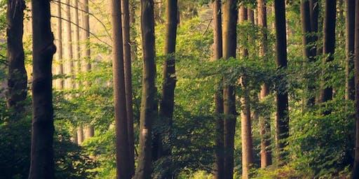 Weekend Retreat - Serenity in Nature
