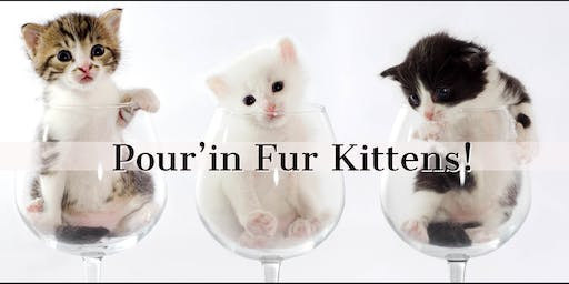 Pour'in Fur Kittens!