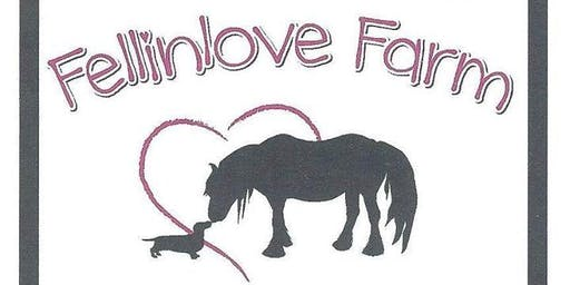AFSN - Fellinlove Farm Family Fun Meet-Up