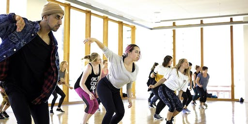 Beginning Adult Hip Hop Workshop