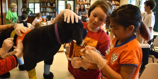 Animal Adventurers Workshop: Do You Want to Be a Veterinarian? (Kids 8-12)