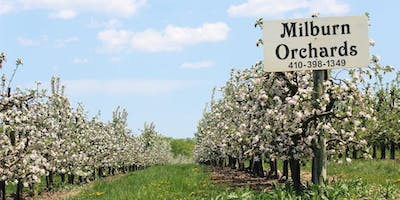 Paint Cecil County Maryland - Milburn Orchards July 20 & 21, 2019